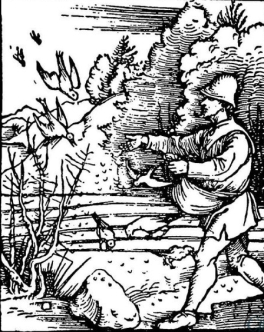 Albrecht-Durer-The-Parable-of-the-Sower