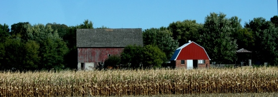 Harvest-time-red-barn